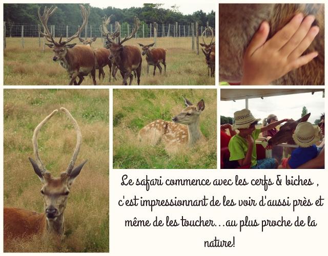 réserve beaumarchais
