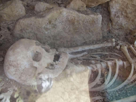 squelette trouvé à némée