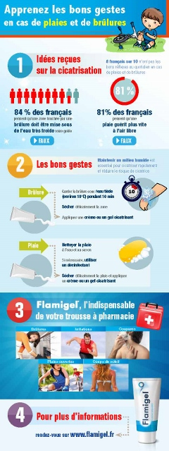 Infographie Flamigel (240x640)