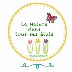 macaron rdv nature