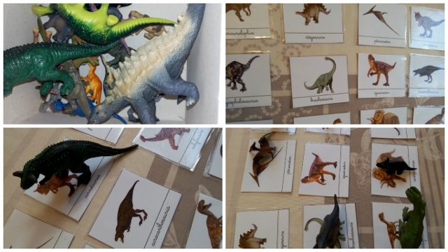 carte nomenclature dinosaure montessori (640x360)