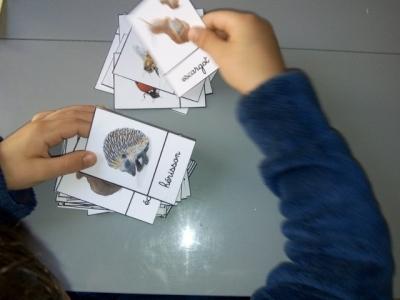 montessori carte nomenclature