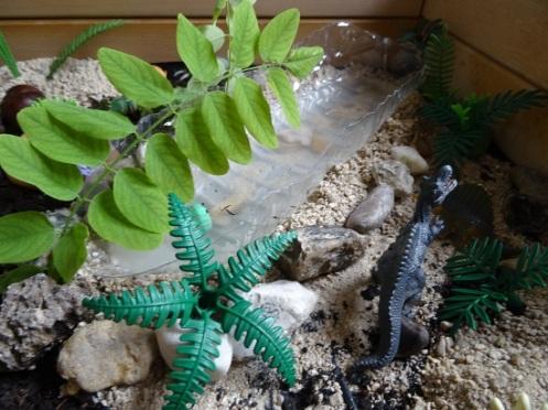 bac-sensoriel-dinosaure-rivière
